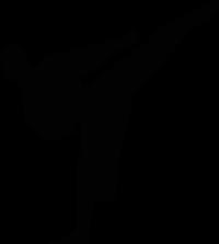 new karate symbol 200